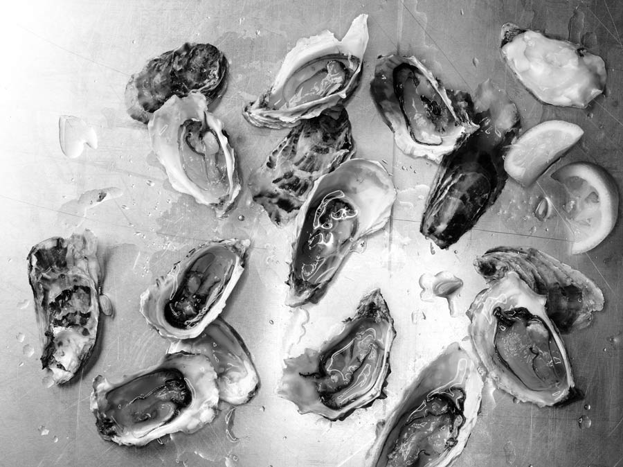 Oysters BW finalsm